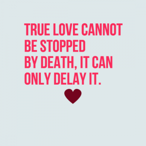 Cute Couple Quotes Custom Couple Quotes  70 Best Cute Love Couple Quotes  Status Quotes