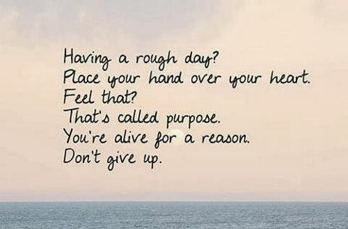 giving_up_quotes4