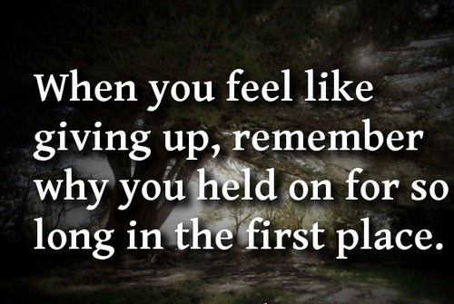 giving_up_quotes6